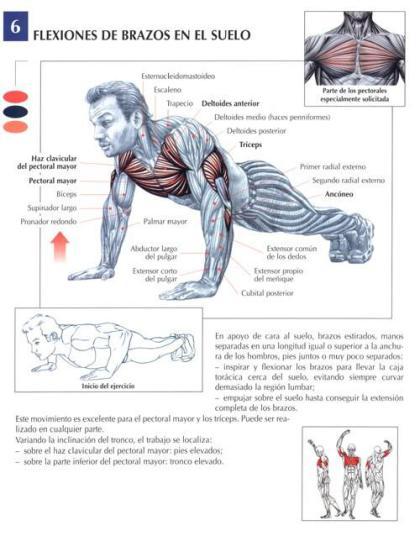 flexiones entrenamiento salamanca entrena